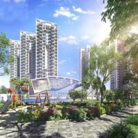 Signature Global City 81  independent floor in gurgaon
